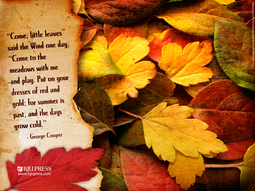 Fall Quotes: Girl From The Hills Blog