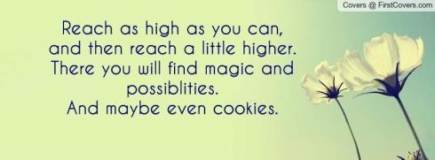 reach_as_high_as_you-127004