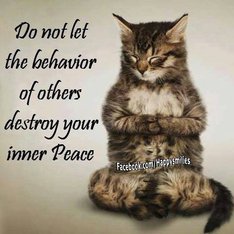 Inner Peace For Busy People: 52 Simple Strategi... by Borysenko, Joan 1401902146