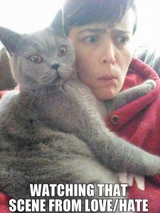 lovehate cat scene