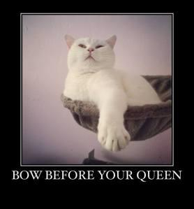 QueenOssie
