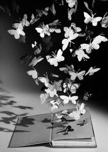 butterfliespaper